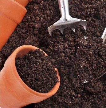 Productos para el jard n jardiner a en torrevieja y for Productos de jardineria